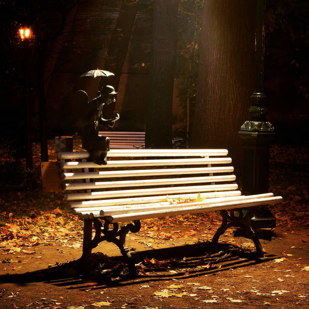 красивые скамейки на улицах спб фото является ведущим