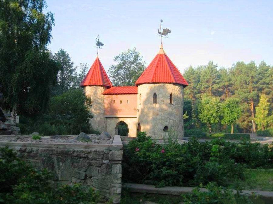 шлюхи в сосновом бору ленинградской области