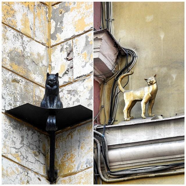Памятник Коту Елисею и кошке Василисе